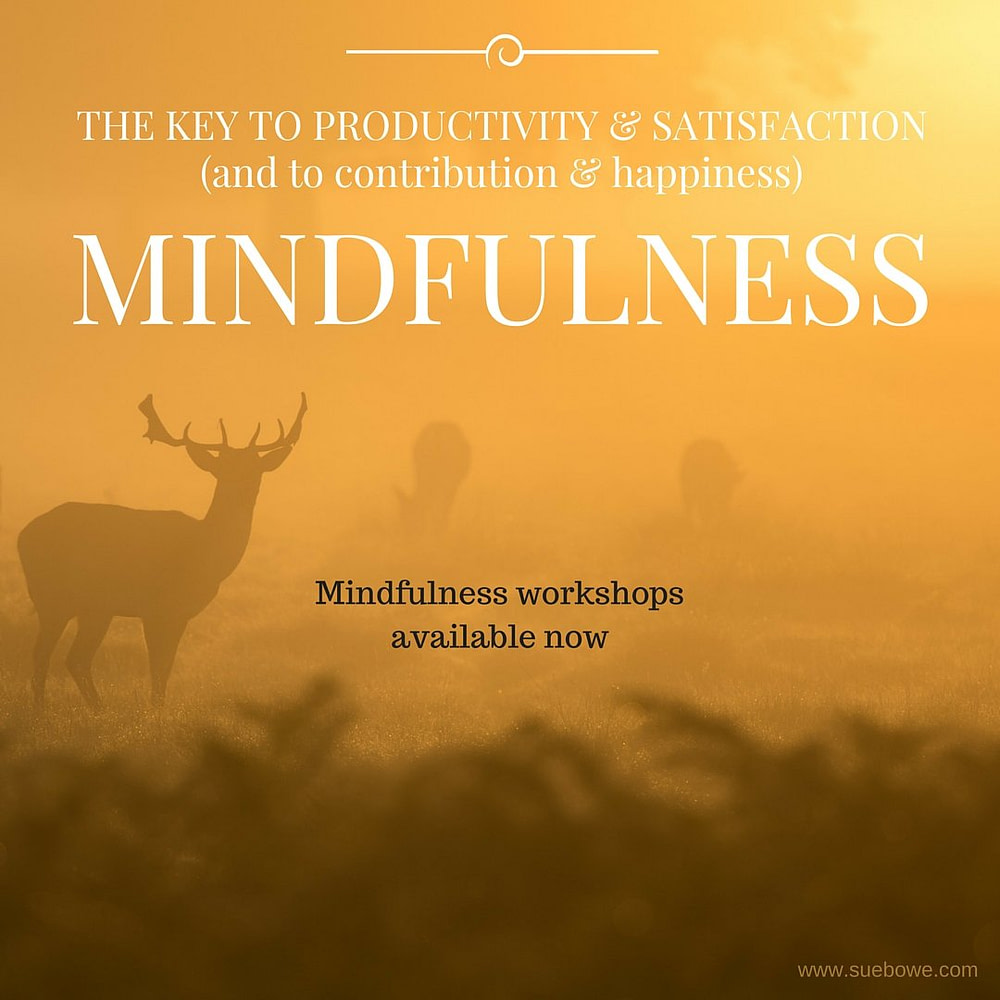Joy, productivity and satisfaction through mindfulness