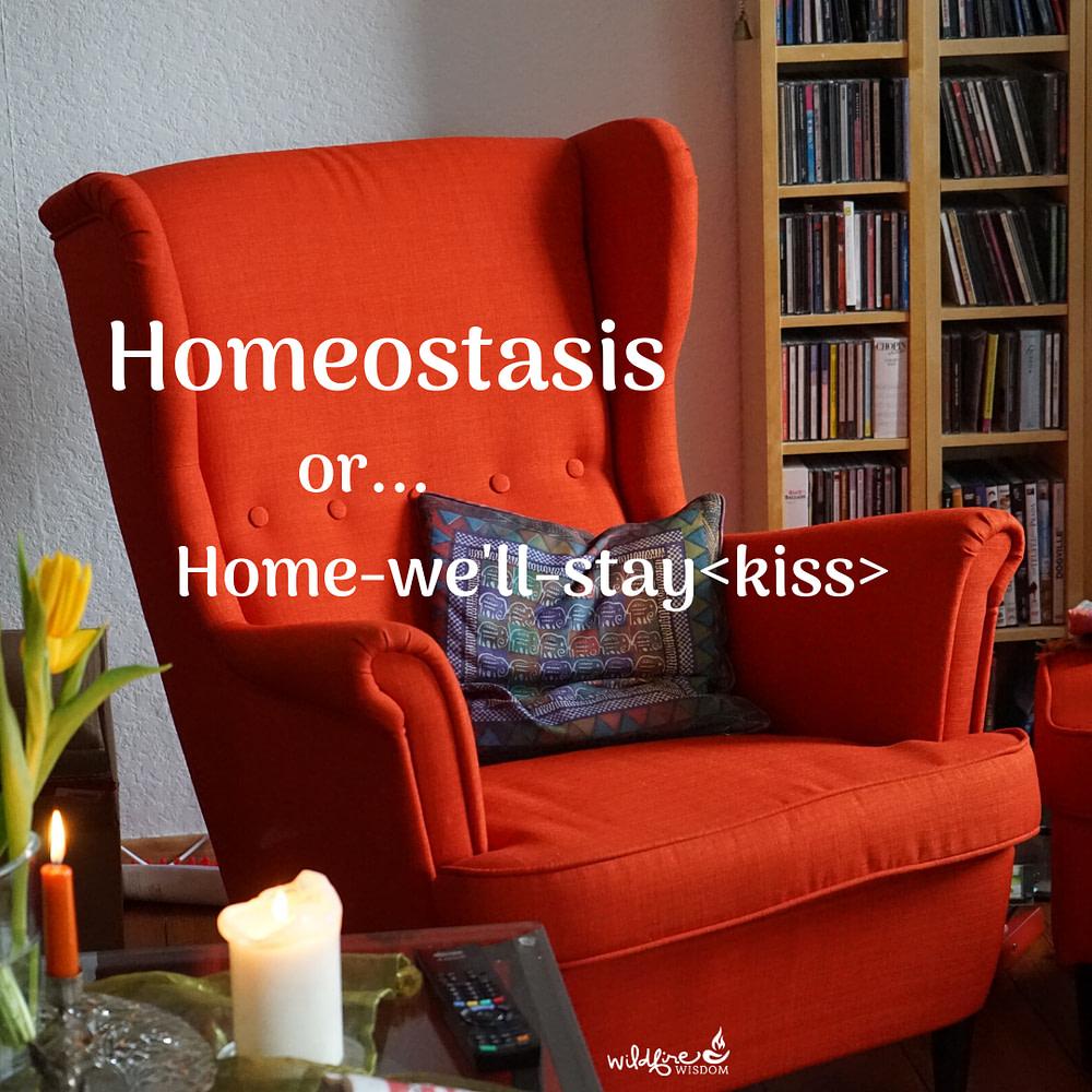 orange chair in den homeostasis